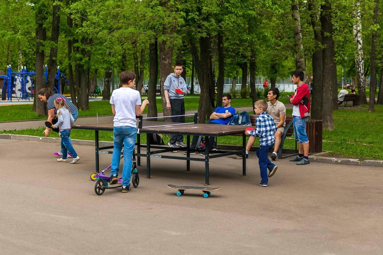 Настольный теннис (Временно закрыт) — ParkSeason