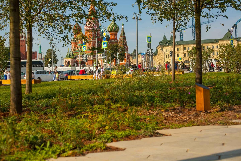 Смешанный лес, Парк «Зарядье», Москва — ParkSeason