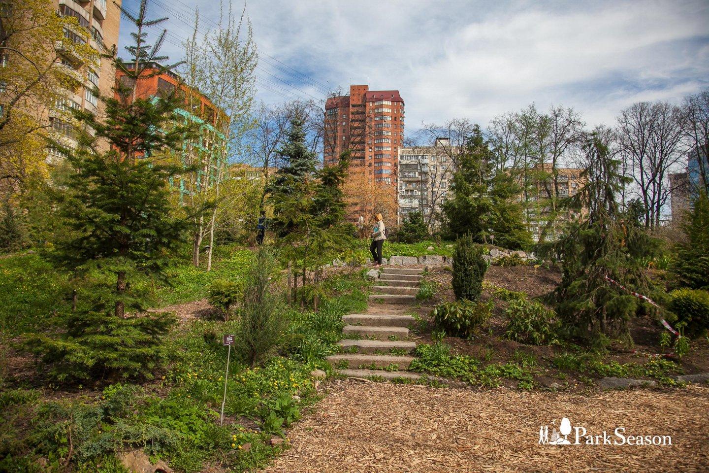 Хвойные горки, Аптекарский огород, Москва — ParkSeason