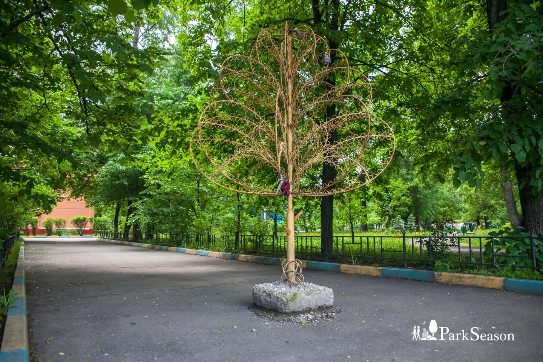 Дерево любви — ParkSeason