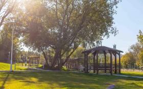 Академический парк: мероприятия, еда, цены, билеты, карта, как добраться, часы работы — ParkSeason