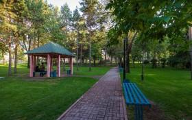 Парк фонда Первого Президента: мероприятия, еда, цены, билеты, карта, как добраться, часы работы — ParkSeason