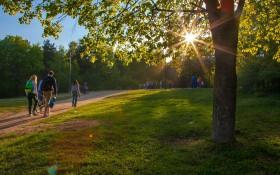 Парк Кузьминки: мероприятия, еда, цены, билеты, карта, как добраться, часы работы — ParkSeason