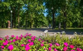 Парк им. Янки Купалы: мероприятия, еда, цены, билеты, карта, как добраться, часы работы — ParkSeason
