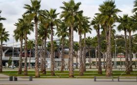 Олимпийский парк: мероприятия, еда, цены, каток, билеты, карта, как добраться, часы работы — ParkSeason