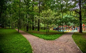 Парк Северные Дубки: мероприятия, еда, цены, каток, билеты, карта, как добраться, часы работы — ParkSeason