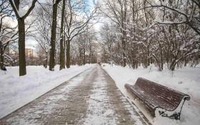 Усадьба Воронцово: мероприятия, еда, цены, билеты, карта, как добраться, часы работы — ParkSeason