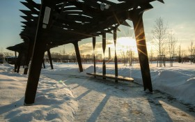 Парк Тюфелева роща: мероприятия, еда, цены, билеты, карта, как добраться, часы работы — ParkSeason