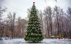 Парк Бабушкинский: мероприятия, еда, цены, каток, билеты, карта, как добраться, часы работы — ParkSeason