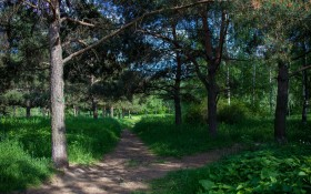 Строгинский парк: мероприятия, еда, цены, билеты, карта, как добраться, часы работы — ParkSeason