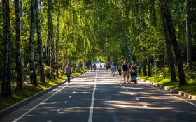 Парк Сокольники: мероприятия, еда, цены, билеты, карта, как добраться, часы работы — ParkSeason