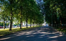 Озелененная территория МГУ: мероприятия, еда, цены, каток, билеты, карта, как добраться, часы работы — ParkSeason