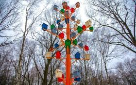 Парк Дубки (Химки): мероприятия, еда, цены, билеты, карта, как добраться, часы работы — ParkSeason