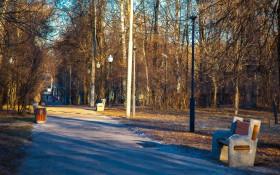 Парк Березовая роща: мероприятия, еда, цены, билеты, карта, как добраться, часы работы — ParkSeason