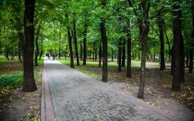 Петровский парк: мероприятия, еда, цены, билеты, карта, как добраться, часы работы — ParkSeason