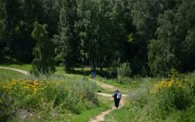 Ландшафтный парк «Митино» — ParkSeason