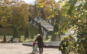 Государственный музей-заповедник Петергоф: мероприятия, еда, цены, билеты, карта, как добраться, часы работы — ParkSeason