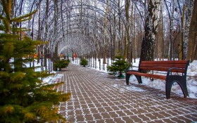 Парк имени Льва Толстого (Химки): мероприятия, еда, цены, билеты, карта, как добраться, часы работы — ParkSeason