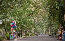 Чистяковская роща: мероприятия, еда, цены, билеты, карта, как добраться, часы работы — ParkSeason