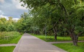 Парк Северное Тушино: мероприятия, еда, цены, билеты, карта, как добраться, часы работы — ParkSeason