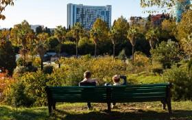 Парк Дендрарий: мероприятия, еда, цены, каток, билеты, карта, как добраться, часы работы — ParkSeason