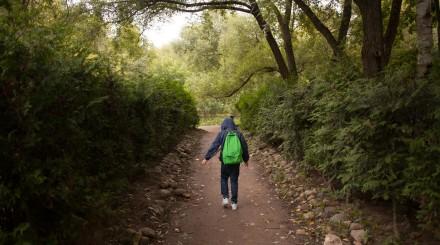 9 поводов зайти в парк усадьбы «Воронцово»