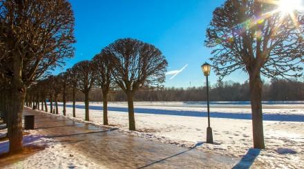 Мороз и солнце: яркая зима в парках Москвы