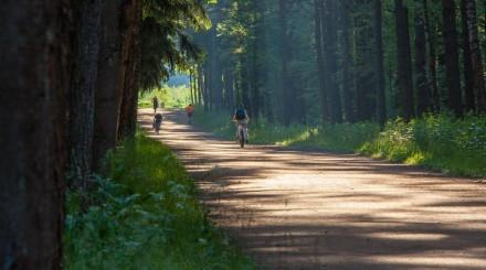 5 неизвестных парков Москвы