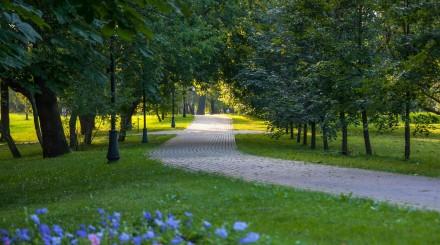 Как будет выглядеть «Сад будущего» после реконструкции?