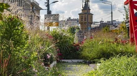Эволюция городского сада. Вторая жизнь сада в новом качестве: мнение ландшафтного дизайнера