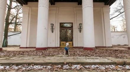 5 необычных мест для ноябрьской фотосессии: подборка ParkSeason