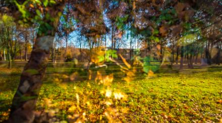 Живописные парки мира осенью: фотоподборка ParkSeason