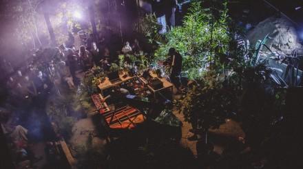 Фестиваль неоклассики в «Аптекарском огороде»: музыкальная программа