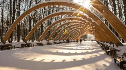 «Сокольники» и февраль: чем успеть заняться в парке зимой