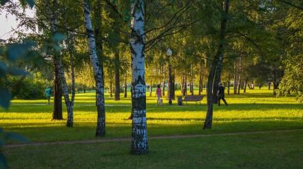 «В парк с детьми»: обзор Сада Будущего