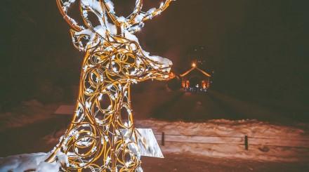 «Аптекарский огород» зимой: сказочные звери и снежные сугробы