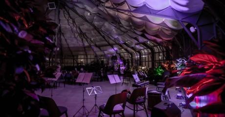 Концерты в оранжерее павильона №14 на ВДНХ