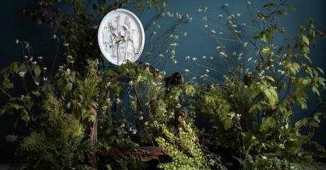 Выставка ботанических барельефов в «Аптекарском огороде»