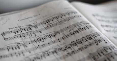 Концерт из цикла «Музыкальный салон на Елагином»