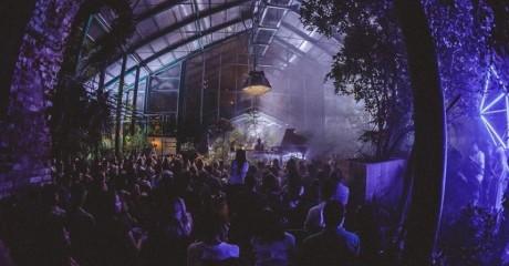 Концерт экзотического джаза в «Аптекарском огороде»