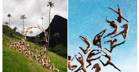 Выставка «Роб Вудкокс. Природные связи»