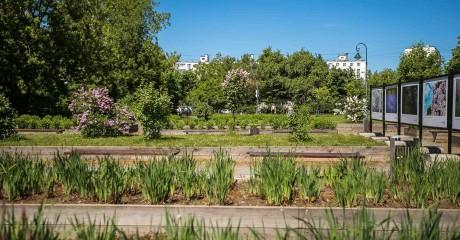 Фестиваль «Зеленый друг» в саду Баумана