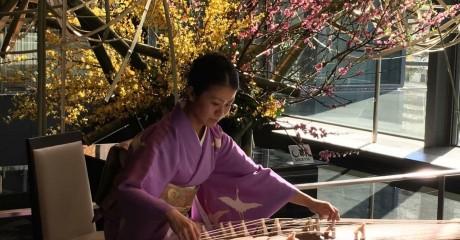 Большая японская чайная церемония в «Аптекарском огороде»