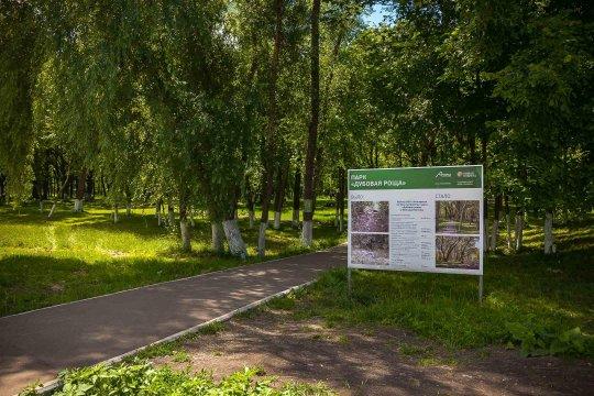 Парк «Дубовая роща»