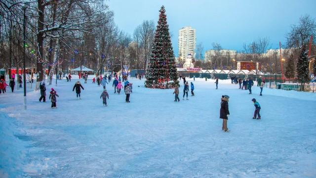 Хоккейная коробка в парке «Митино»