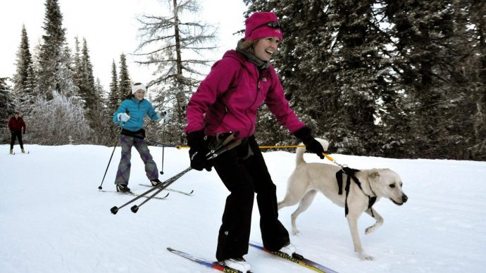В «Сокольниках» досрочно открылась лыжная трасса