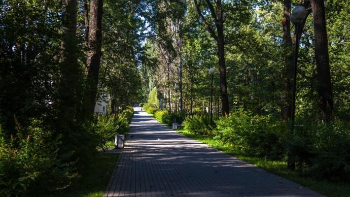 На Russpass появились онлайн-экскурсии по Терлецкому и Измайловскому паркам