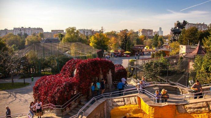 Московский зоопарк организует сафари-парк с гостиницей для посетителей