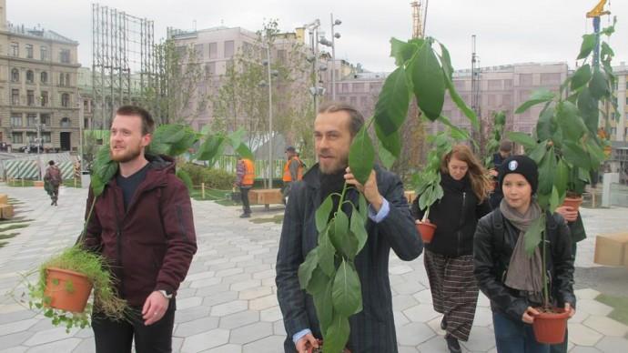Децл подарил парку «Зарядье» два вида авокадо