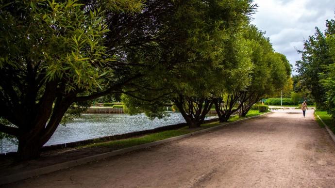 Экологический маршрут «Удивительная Яуза» можно пройти бесплатно по вторникам и четвергам